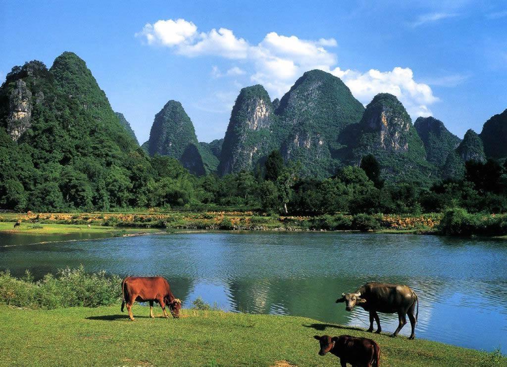 阳朔旅游风景景区图片